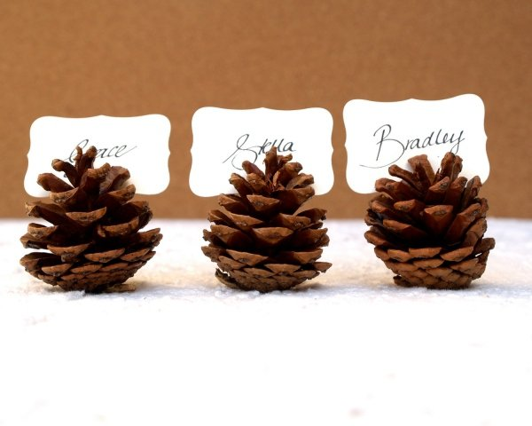 rustic-christmas-table-decoration-ideas-place-card-holders-oinecones