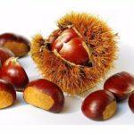5 receptů na pochoutky z jedlých kaštanů